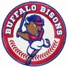 Buffalo Bisons logo machine embroidery design for instant download