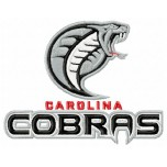 Carolina Cobras logo machine embroidery design for instant download