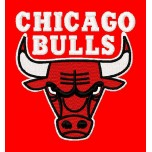 Chicago Bulls Logo Machine Embroidery Design for instant download